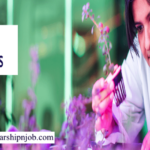 Partially Funded GREAT Scholarships for International Students - United Kingdom